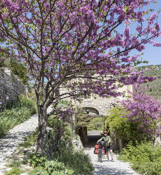 Brantes, village of Ventoux
