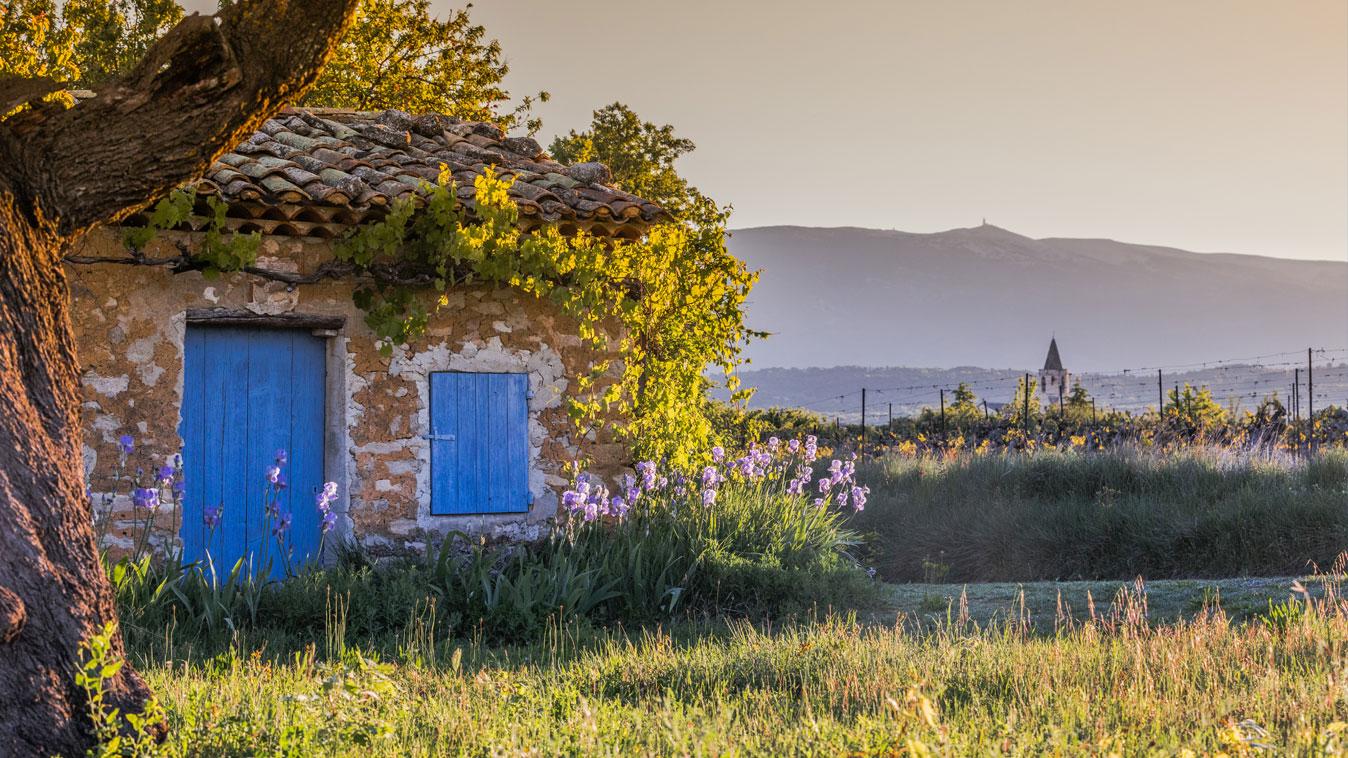 Mazan en Vaucluse Provence