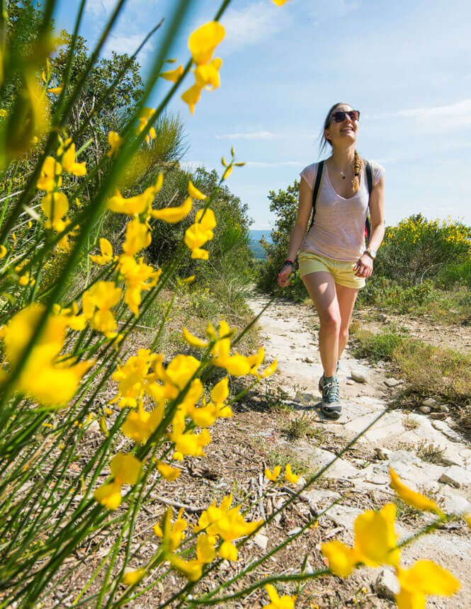 Hiking in Vaucluse Provence