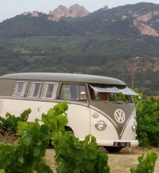 Vineyard experience in a minivan