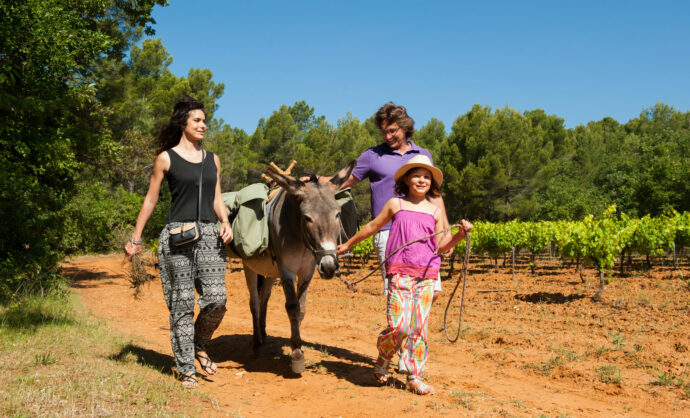 Walk with donkeys in Provence @ Cintas Florès