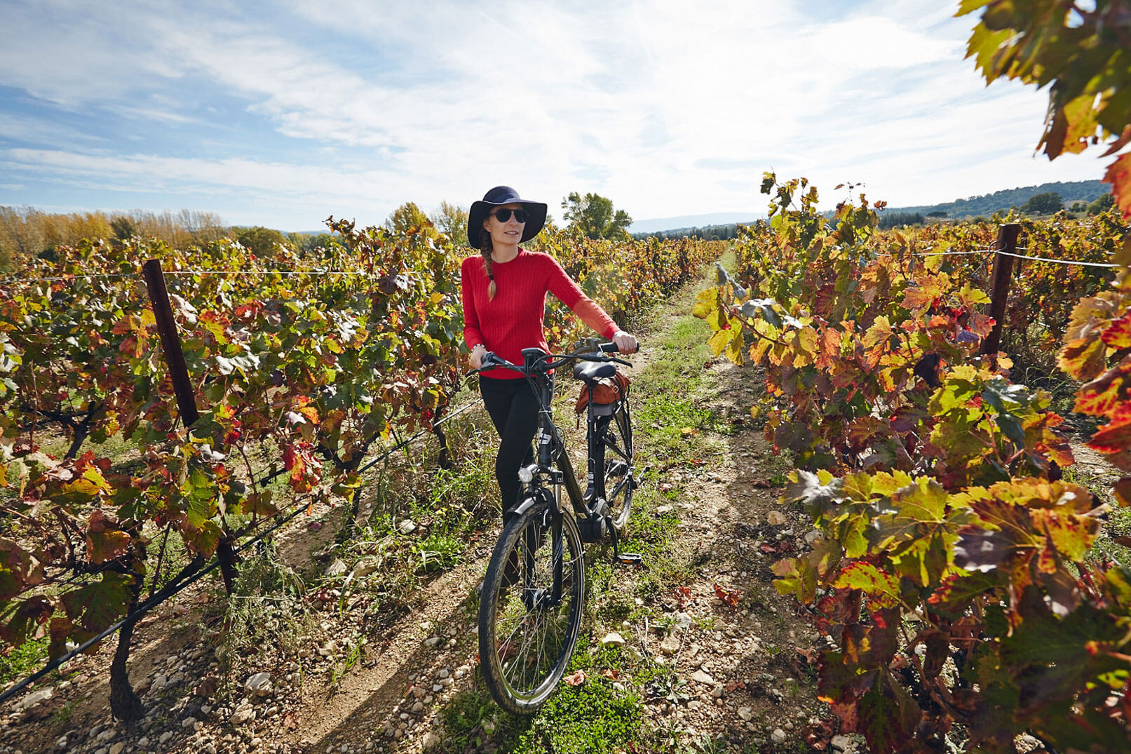 Strolling in the vineyards of Provence @ Coquard