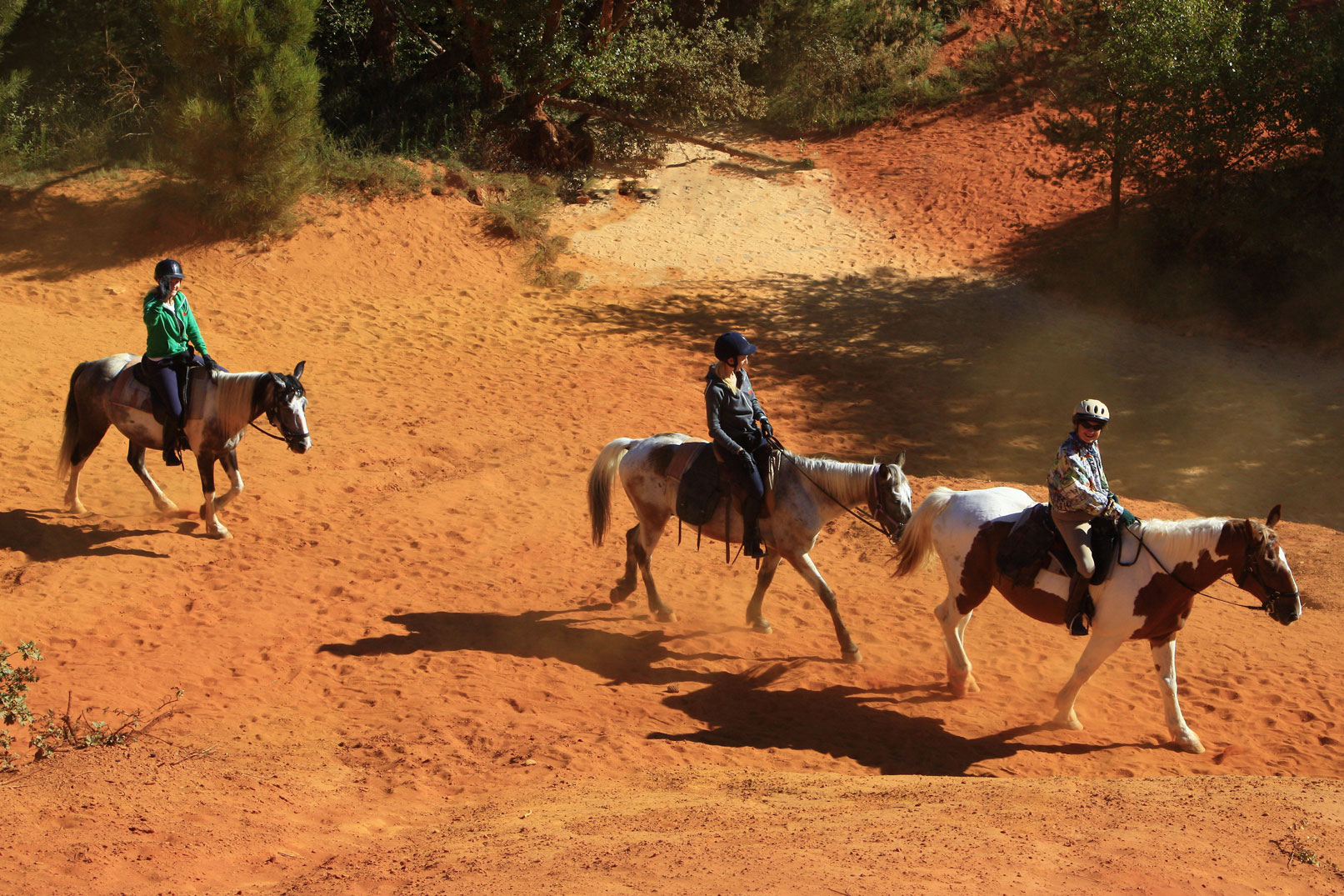 Equestrian centres @ Hocquel