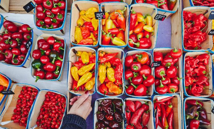 Markets of Provence @ Coquard