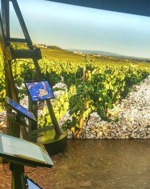 Wine museums @ Abry
