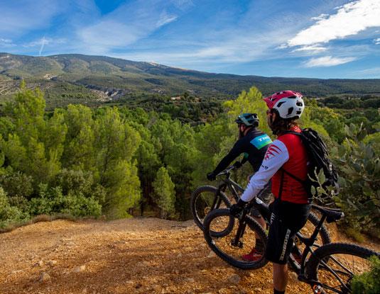 Mountain bike in Ventoux @ Hocquel