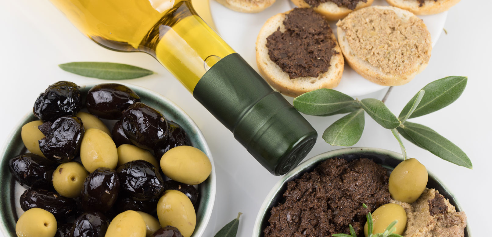 The olive, one of the treasures of Provence