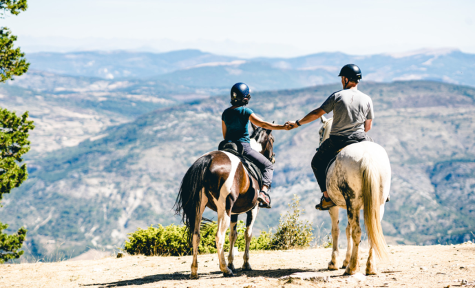 Horse riding in Ventoux