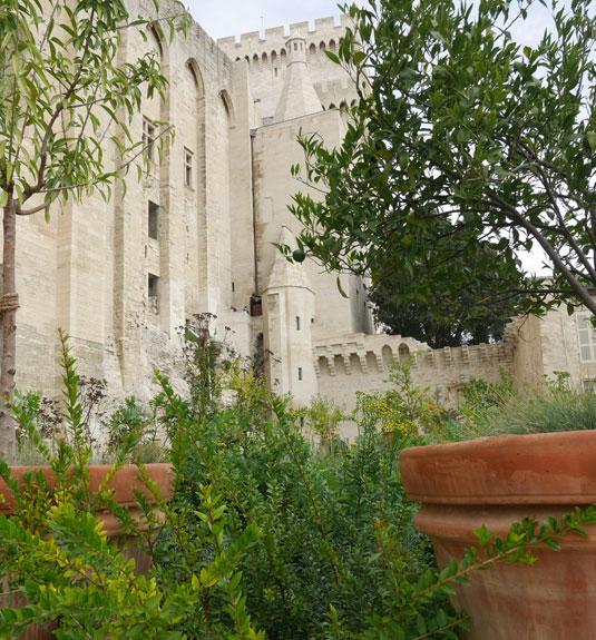 Urbain V garden at the Popes' Palace