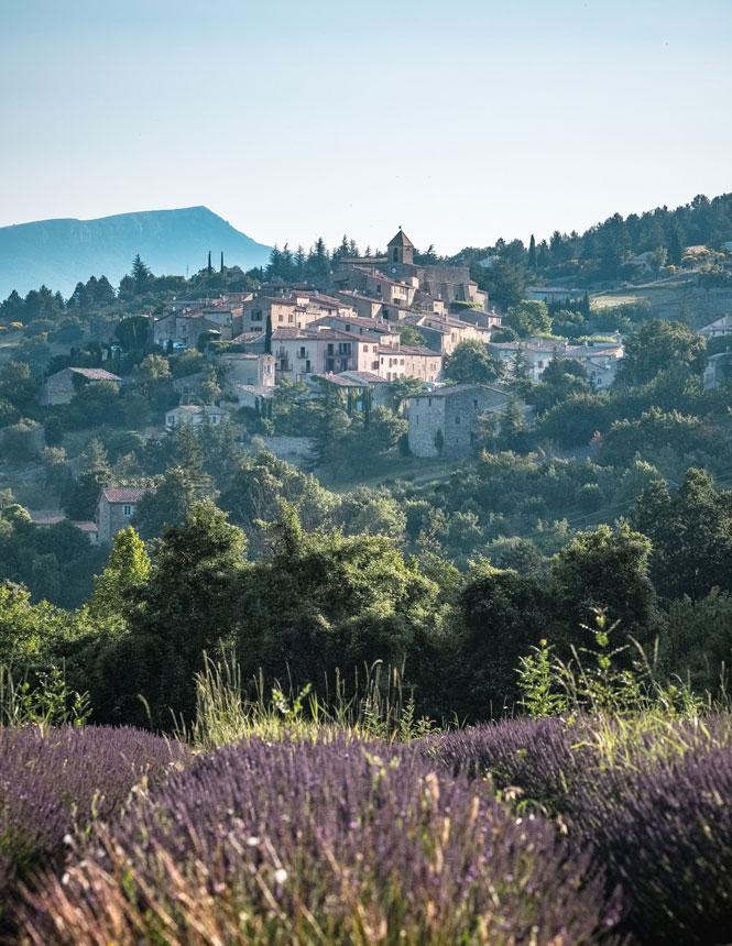 Aurel village and lavender