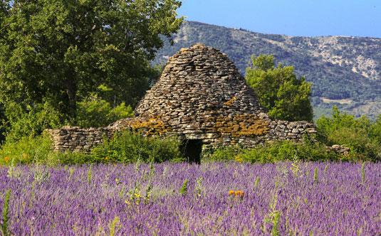 Claparèdes - Provence