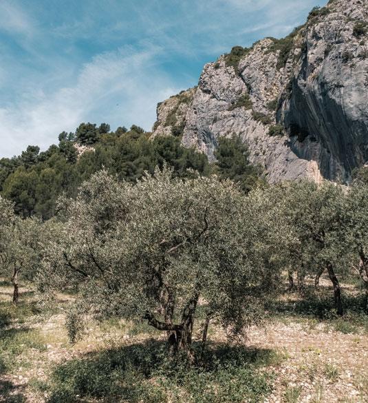 Gorges du Régalon Luberon