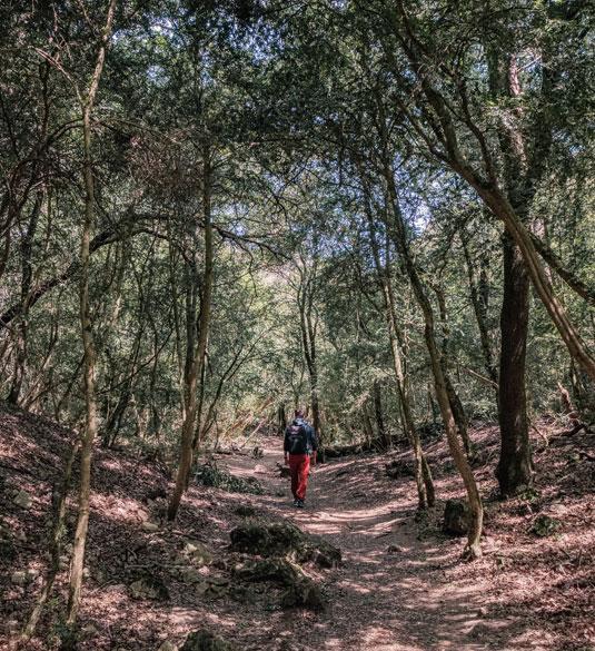 Hiking Gorges du Regalon Luberon