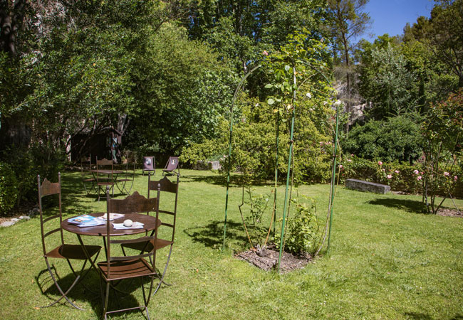 the garden and rose garden  at the Petrarch Museum-Library